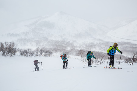 Gruppe von vier Backcountry-Skifahrern, die in Hokkaido bergauf wandern. Die Gruppe fährt bei einem Schneesturm im Tiefschnee in der Nähe von Niseko, Japan. Standard-Bild