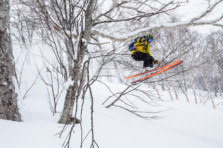 Man backcountry skiing Niseko Mountain jumps through thick trees in deep snow. Skiing northern Japan in Hokkaido.