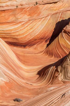 Morning light illuminating the Wave formation in northern Arizona in Coyote Buttes special use area.