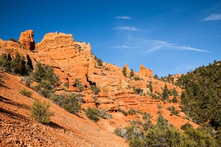 Cedar Canyon, leading up from Cedar City, Utah, heads into the wilderness and leads to many red rock canyons such as this.