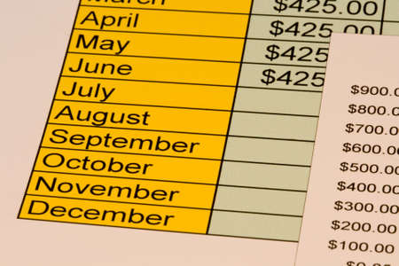 Chart for personal budget with expenses for each month