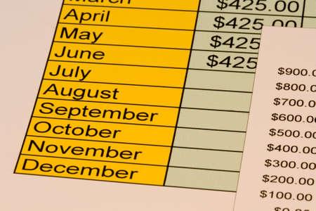 Grafiek voor het persoonsgebonden budget met de kosten voor elke maand