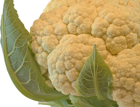 Large Head of Cauliflower isolated on white