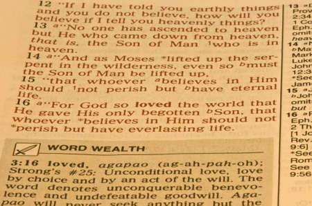 Bible Scripture John 3:16 版權商用圖片