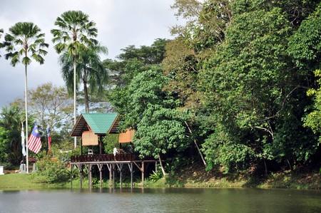 sandakan: Rainforest Discovery Centre (RDC) near Sepilok in Sabah, Malaysia.