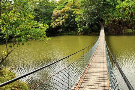 expeditions: Hanging bridge over river in Malaysia. Stock Photo
