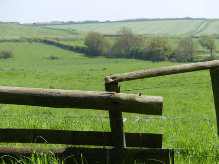 A wooden fence by green meadows in Dorset, England