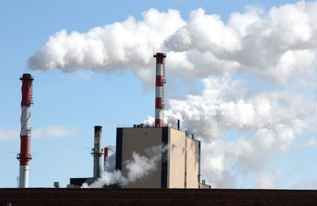 particulates: air pollution