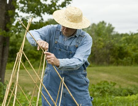 bamboo trellis being made by farmer in bib overalls and straw hat