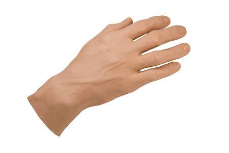 mano de pr�tesis artificial para la formaci�n m�dica aislado sobre fondo blanco