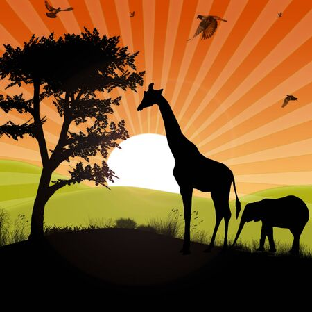 safari animals silhouette in an afican sunset landscape