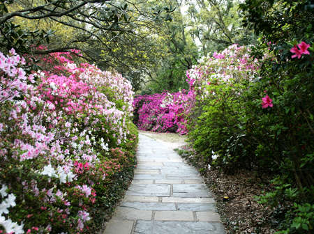 brick garden path through a flower garden