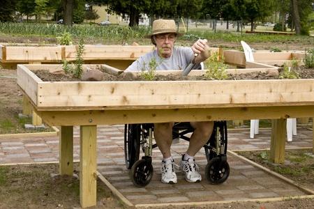 gehandicapte tuinman bezig met verhoogde bedden gemaakt van hout