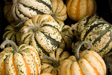 gourds: several gourds stacked together make a garden harvest background