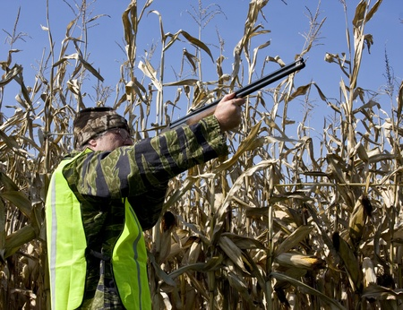 fall hunter in corn field with safety vest and shotgun Banco de Imagens