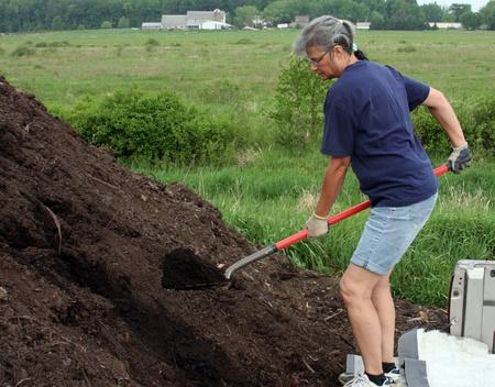 vrouw werknemer belasting compost op een vrachtwagen met een schop Stockfoto