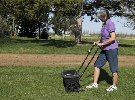 woman fertilizing her lawn with a spreader Stok Fotoğraf