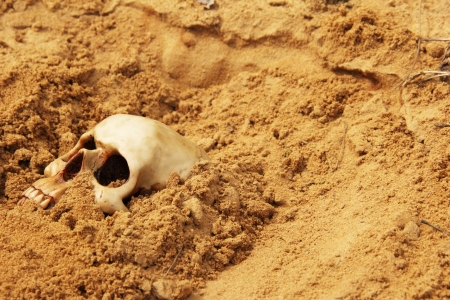 human skull buried in the sand