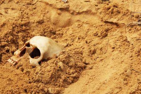 menselijke schedel in het zand begraven Stockfoto