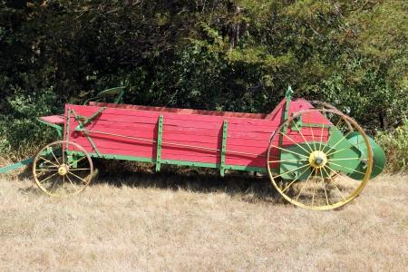 carreta madera: viejo vag�n de madera con ruedas de acero sobre un fondo boscoso Foto de archivo