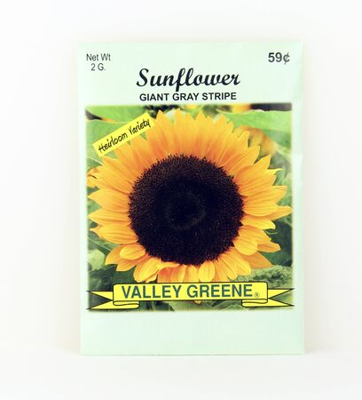 SPENCER , WISCONSIN, May, 10, 2015  Package of Valley Greene Sunflower Seeds. Valley Greene is an American Seed company originating from Greene, NY, Sajtókép