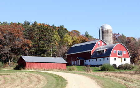 barns: Wisconsin dairy farm with red barn silo and shed with fall colored trees in the background