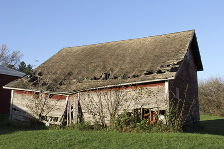 damaged roof: Broken down farm shed with caved in roof and falling sides