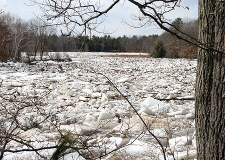 ice dam: Ice dams up as it breaks up on a freshwater lake