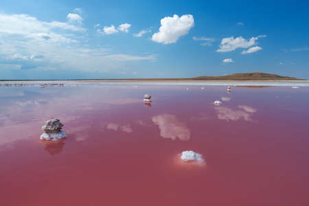 Pink salt lake with white clouds reflection