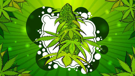 Green bright illustration with a cannabis flower in cartoon style. Background with leaves and a cannabis flower with abstract figures in graffiti style