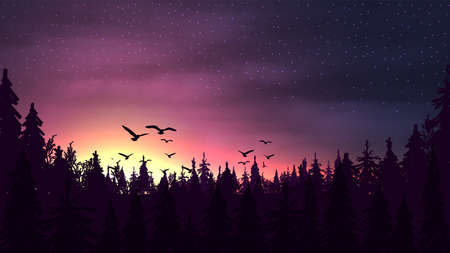 Pink sunset in a pine forest with a silhouette of trees, starry sky and birds soaring above the treetops