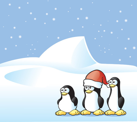 Penguin Postcard Vector