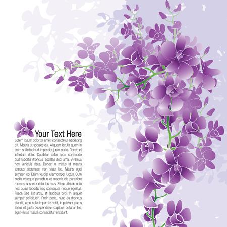 Pagina-indeling van paarse orchideeën met mogelijk tekst plaatsing.
