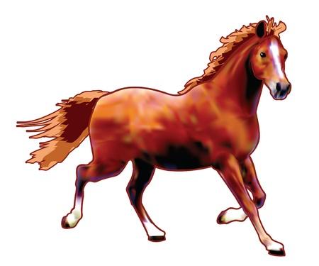 Vector caballo creada con la técnica de gradiente de malla