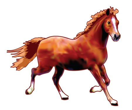 racing: Vector horse created with gradient mesh technique  Illustration