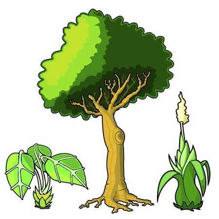 Illustration of various green plants and tree  向量圖像