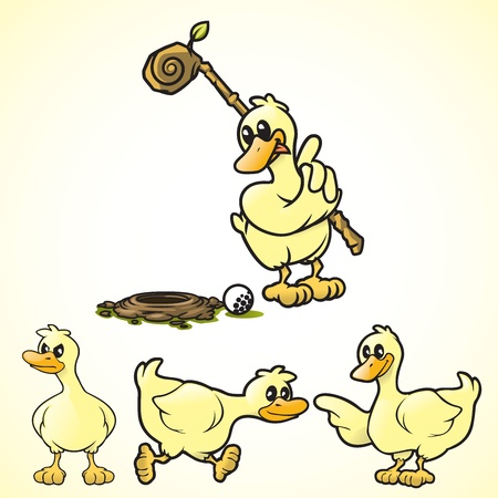 Cartoon vector ducks in various poses   Vector