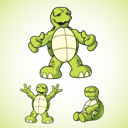 Cartoon vector turtles in various poses  Vector