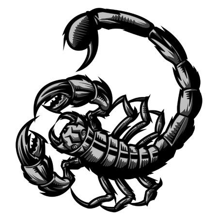 Scorpion representa signo zodiacal Escorpio o simplemente un vector fuerte gráfico para su uso general en capas y fácil de editar Foto de archivo - 22351488