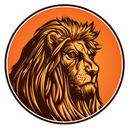 Lion Banque d'images - 28512071