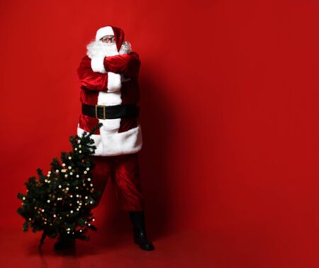 Strict santa claus with a big belly, standing arms crossed, brought a Christmas tree for the holiday