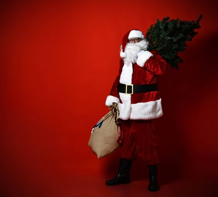 Fat Santa Claus hurries for the holiday to you. He carries a Christmas tree on his shoulder and a large bag full of gifts. on a red background.