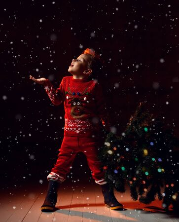 little boy in a red knitted suit with a picture of a Christmas deer, holds a Christmas tree in one hand and the second tries to catch snowflakes