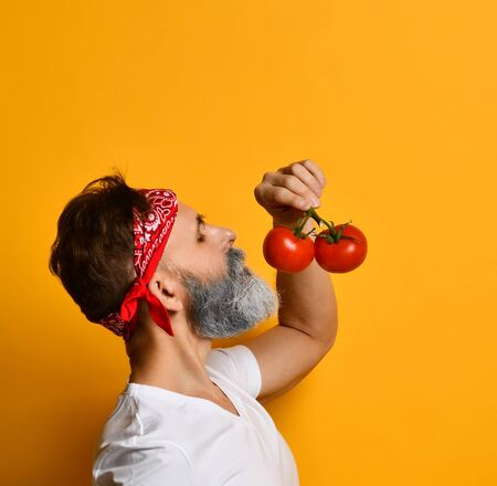 Gray-bearded man in years in red bandana, white t-shirt and bracelet. He holding red tomatoes on twigs, sniffing it, posing sideways against orange background. Close up, copy space Imagens