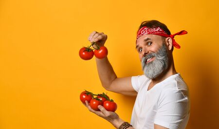 Gray-bearded, middle-aged guy in red bandana, white t-shirt and bracelet. He is smiling, showing red tomatoes on twigs, posing standing sideways on orange background. Close up, copy space