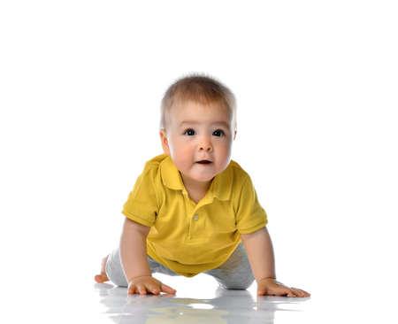 Baby Crawling over White Background, Happy Kid , Child Boy Crawl, White Isolated