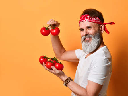 middle-aged gray-bearded farmer in a red bandana, white T-shirt and bracelet. He smiles, shows red tomatoes on the branches, poses sideways on an orange background. Close up, copy space