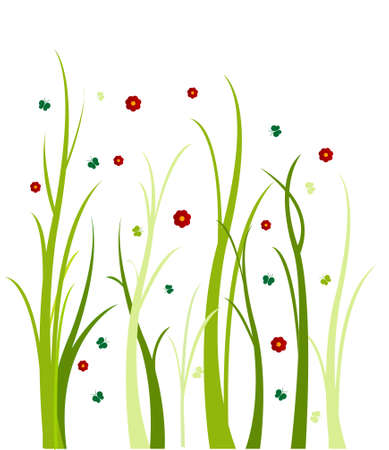 white lilly: floral background