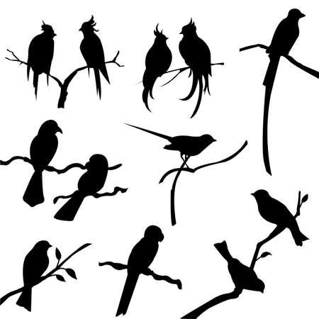 �rboles con pajaros: siluetas de ave