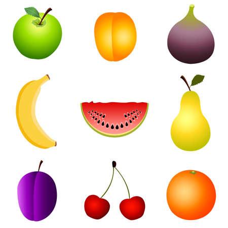 fruits Stock Vector - 8580554